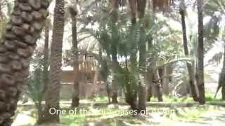 Al Ain United Arab Emirates  City pictures : A day in Al Ain - United Arab Emirates