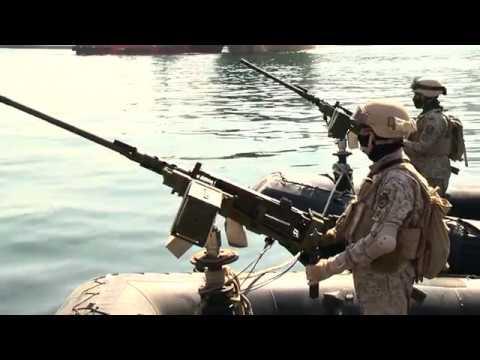قواتنا المسلحة تروي حكاية الشجاعة والفداء