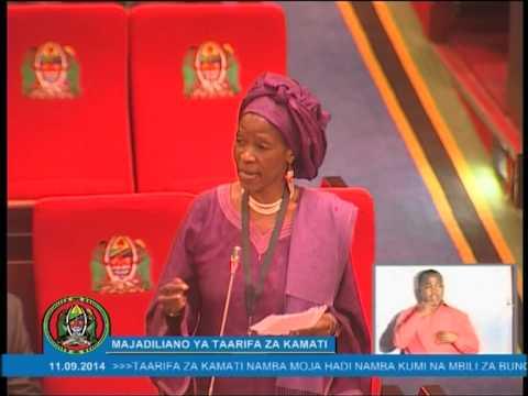 Prof Anna Tibaijuka akichangia katika Bunge maalumu la Katiba 11.09.2014