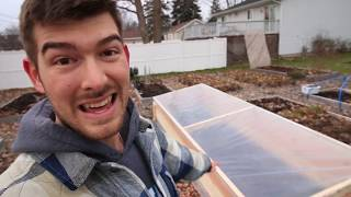 How to Build a Cold Frame for $50 from Start to Finish - Grow Vegetables All Winter