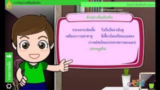 สื่อการเรียนการสอน การวิเคราะห์ข้อเท็จจริง ม.2 ภาษาไทย
