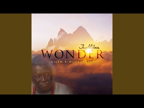 WONDER Abejoye