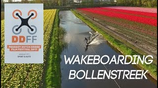 Wakeboarding between the flower fields