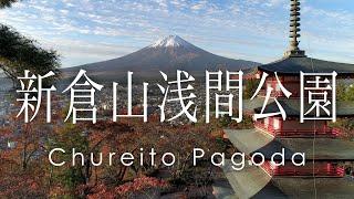 新倉山浅間公園 忠霊塔の紅葉と富士山 - Autumn leaves and Mt.Fuji at Chureito Pagoda
