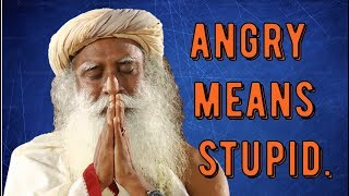 Video Sadhguru -next time you're angry - know you're stupid MP3, 3GP, MP4, WEBM, AVI, FLV April 2018