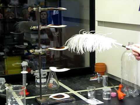 老師在化學課中拿了一根羽毛輕碰眼前的粉末後,隨即出現的駭人的景象讓學生們都嚇到逃離課室!