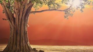 Video MAGICAL HEALING MANTRA ❯ Prana Apana Sushumna Hari Meditation MP3, 3GP, MP4, WEBM, AVI, FLV September 2018