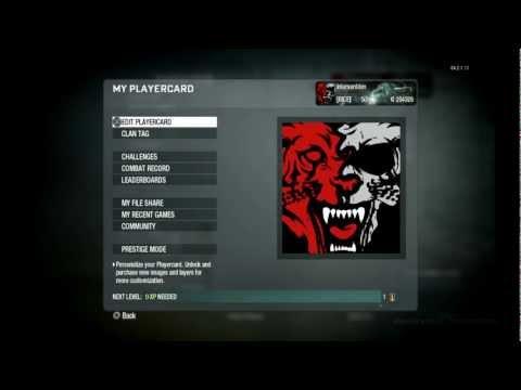 Black Ops - AMAZING Tiger Skull Emblem Tutorial
