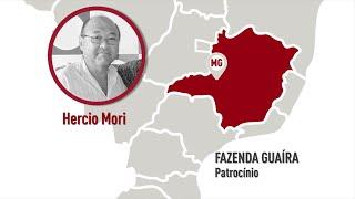 MG - Patrocínio - Hercio Mori