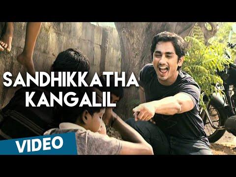 Sandhikkatha Kangalil Official Video Song   180   Siddharth   Priya Anand
