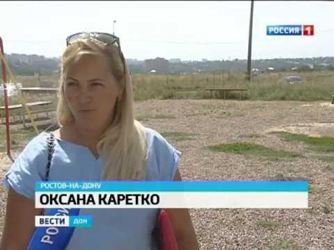 Ростовская область утопает в зарослях амброзии