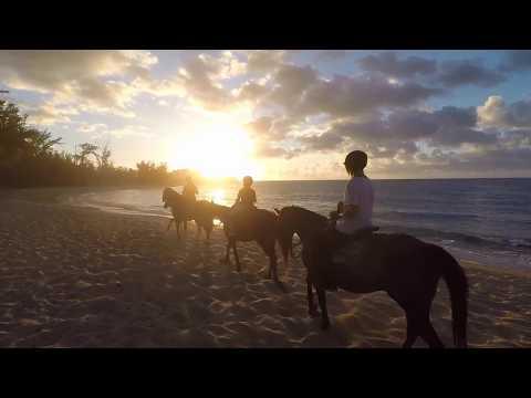 Sunset Horseback Ride Oahu Hawaii