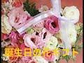 誕生日 花 カノシェ話題|誕生日の花ギフトカノシェ話題
