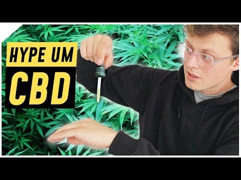 CBD: Hype oder Heilmittel?