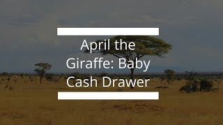 April the Giraffe Baby Cash Drawer