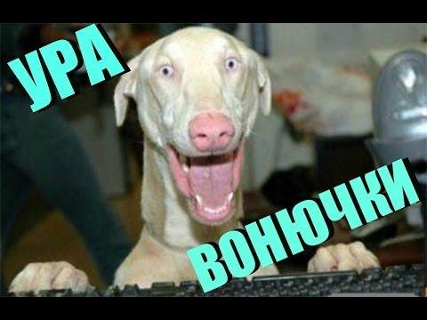 Монтаж | КУЧКИ ВОНЮЧКИ