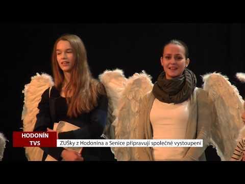 TVS: Deník TVS 7. 12. 2018