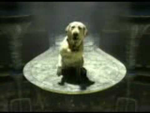 (c) – Funny Banned Commercials – Budweiser – Alien (superbowl).mpg