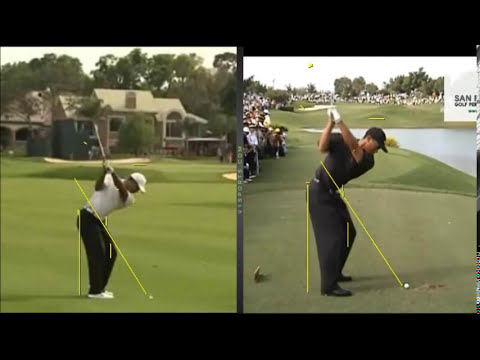 Tiger Woods Golf Swing by Craig Hanson
