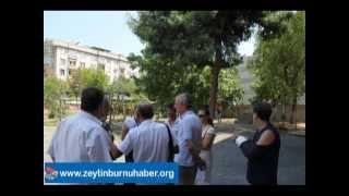 Zeytinburnuİtfaye Binasının Önündeki Ağaçları Kesen Belediyeye Halk Tepki Koydu