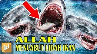 """Video SEJARAH AWAL  """"ALLAH """" MENCABUT LIDAH IKAN ( Menurut Islam ) MP3, 3GP, MP4, WEBM, AVI, FLV Juni 2019"""