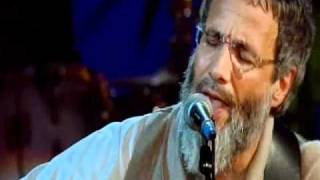 Father And Son / 2007 - Cat Stevens (Yusuf Islam)