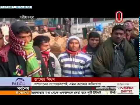 Hilsa fish fry being smuggled from Shariatpur at night (22-02-2017)