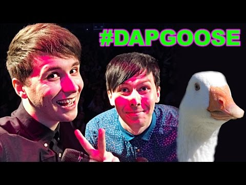 Status profundos - #DAPGOOSE - The Dan and Phil Go Outside On Stage Event