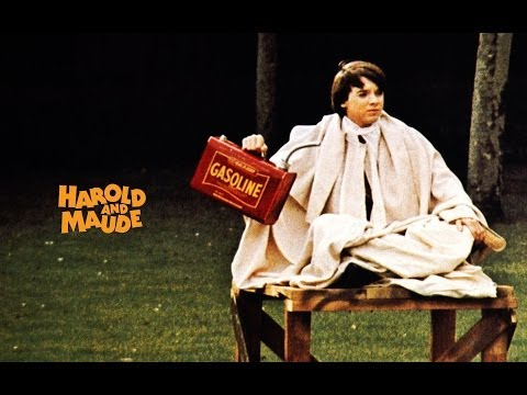 Harold And Maude (1971) Movie Review And Discussion