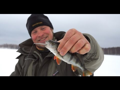 видео ловля окуня кузьминым