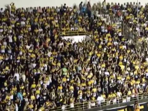 TIGRE 1 XO AVAI 4 5 2013 045 - Os Tigres - Criciúma