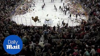 Fans throw 34,000 toy bears onto ice during hockey match