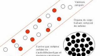 Nanotechnologie 2