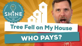Trees falling on your house can cause major damage.  But what if the tree was your neighbors?  Does their insurance pay or does yours?  This video answers that question for ya.Learn more about us at:Our Site -  www.shineinsurance.comOur Blog - www.shineinsure.com/blogOur Podcast - www.scratchentrepreneur.comOur Course - www.newhomebuyersguide.net