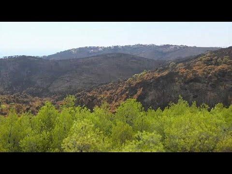 Πυρκαγιά στο Μάτι: Ο παράγοντας κλιματική αλλαγή