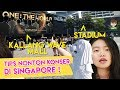 Download Lagu TIPS NONTON KONSER DI LUAR NEGERI - SINGAPORE #1 Mp3 Free