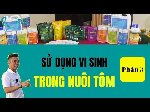 Hội thảo sử dụng vi sinh thay thế hóa chất, kháng sinh trong NUÔI TÔM SẠCH phần 3