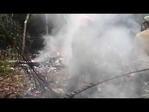 Vídeo - Avião cai e passageiros morrem em Manaus Aeronave de pequeno porte transportava seis pessoas; um sobreviveu