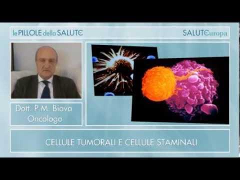 Cellule tumorali e cellule staminali – Dr.Pier Mario Biava