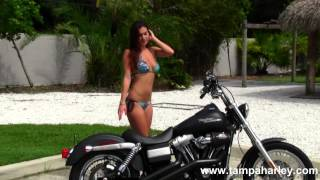 9. Used 2008 Harley-Davidson FXDB Dyna Street Bob Motorcycle for Sale in Dunedin, Florida