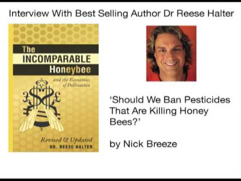 Honey Bees Are Dying From Pesticides – Interview with Dr Reese Halter