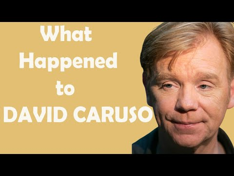 What Really Happened to DAVID CARUSO - Star in series CSI: Miami