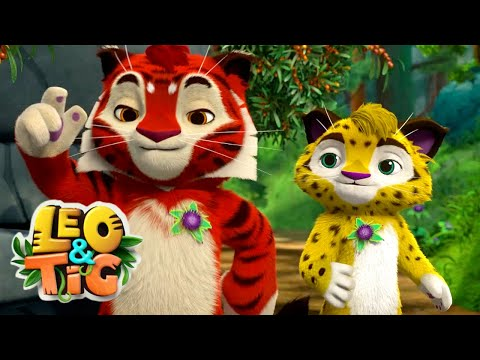 LEO and TIG 🦁 NEW 🐯 Episode 24 - Taiga Patrol ❤️ Moolt Kids Toons Happy Bear
