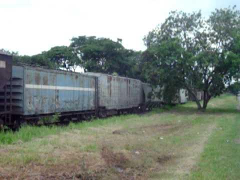 Trem de carga em Sumaré-SP