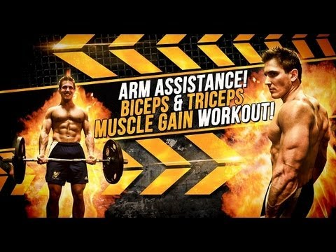 Arm Assistance! Biceps & Triceps Muscle Gain Workout!