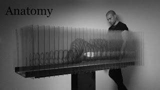 Download Lagu JAGO - Anatomy Mp3