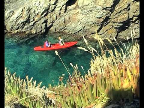 Blue bear club: Sea kayaking