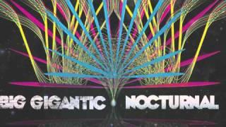 Thumbnail for Big Gigantic — Nocturnal