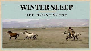 Winter Sleep - The Horse Scene