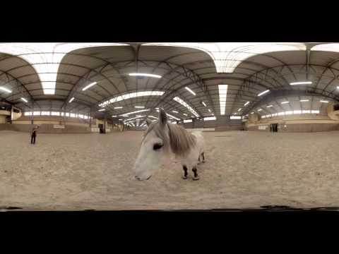 360 Video of Horseriding
